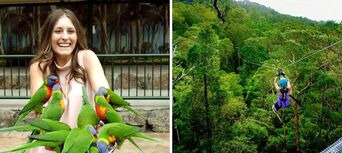 TreeTop Challenge & Currumbin Sanctuary Ticket Combo Thumbnail 1