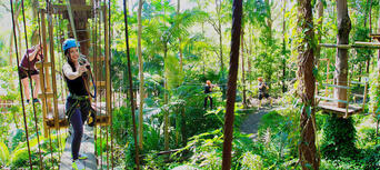 TreeTop Challenge & Currumbin Sanctuary Ticket Combo Thumbnail 2
