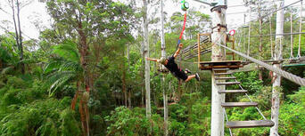 TreeTop Challenge & Currumbin Sanctuary Ticket Combo Thumbnail 3