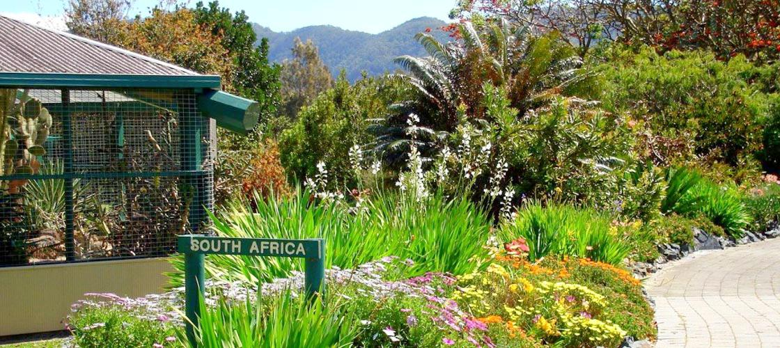 Free Things To Do  North Coast Regional Botanic Garden Coffs Harbour
