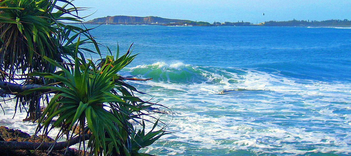 Free Things To Do  Park Beach Coffs Harbour