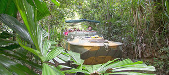 Rainforestation Nature Park Package Thumbnail 1