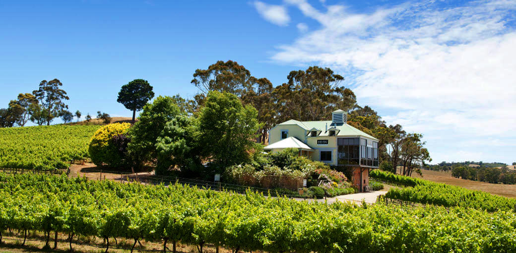 Free Things To Do  Hahndorf Hill Winery