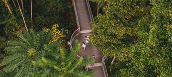 Mamu Tropical Skywalk Entry Tickets Thumbnail 5