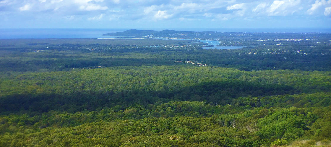 Free Things To Do  Tewantin National Park Noosa