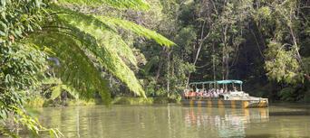 Cairns, Kuranda and Port Douglas 4 Attraction Pass Thumbnail 3