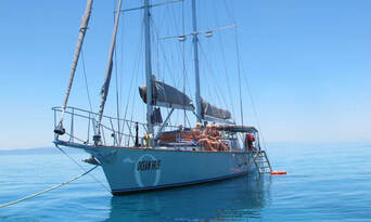 Green Island Sailing Cruise Thumbnail 5