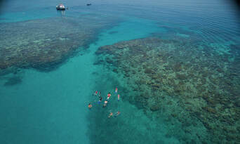 Great Barrier Reef Cruise to Upolu Cay and Outer Reef Thumbnail 5