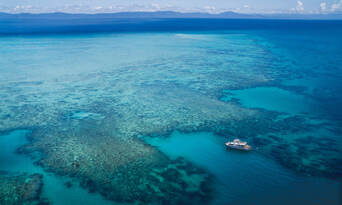 Great Barrier Reef Cruise to Upolu Cay and Outer Reef Thumbnail 2