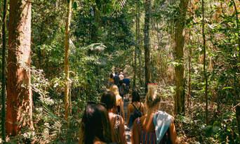 Atherton Tablelands and Waterfalls Guided Tour Thumbnail 4