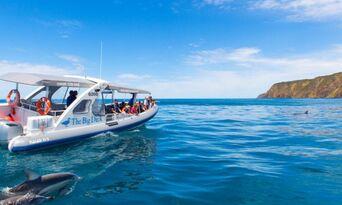 Victor Harbor Seal Island Cruise Thumbnail 1