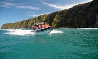 Victor Harbor Seal Island Cruise Thumbnail 4