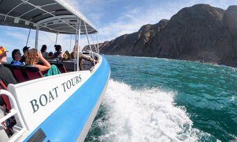 Victor Harbor Seal Island Cruise Thumbnail 5