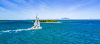 Full Day Low Isles Cruise from Port Douglas Thumbnail 5