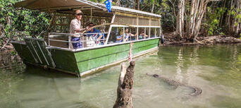 Port Douglas and Hartleys Crocodile Adventures Tour Thumbnail 5