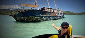 60 Minute Wildlife Eco Bay Cruise from Airlie Beach Thumbnail 3