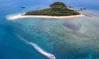 Frankland Islands Reef Cruise & Island Day Tour Thumbnail 4