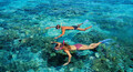 Whitsundays Scenic Premium Tour Thumbnail 1