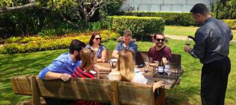 Brisbane to Gold Coast Winery Tour Thumbnail 4