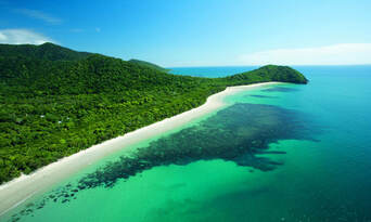 Cape Tribulation Day Tour with Daintree Wildlife Cruise Thumbnail 1