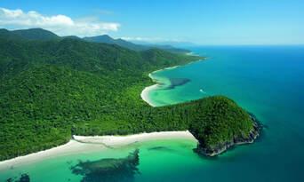 Cape Tribulation Day Tour with Daintree Wildlife Cruise Thumbnail 2