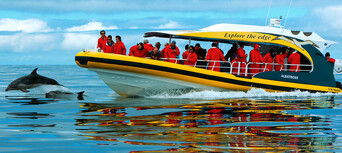 Bruny Island Wilderness Cruise and Bus Transfer from Kettering Thumbnail 2
