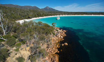 Bruny Island Wilderness Cruise and Bus Transfer from Kettering Thumbnail 4