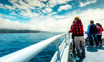 Bruny Island Wilderness Cruise and Bus Transfer from Kettering Thumbnail 5
