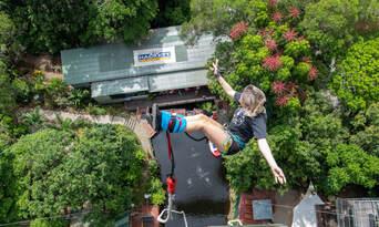 Cairns Bungy Jumping Thumbnail 2