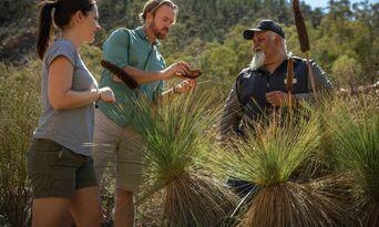 Flinders Ranges 4WD Half Day Aboriginal Cultural Tour Thumbnail 2