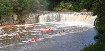 Haruru Falls Half Day Guided Tour Thumbnail 2