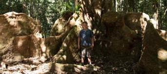 Kuranda Rainforest ATV Quad Bike Tour Thumbnail 3