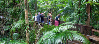 Daintree Rainforest and Mossman Gorge Luxury Tour Thumbnail 1