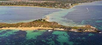 Penguin Island Wildlife Cruise Thumbnail 6