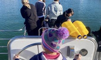 Mandurah Dolphin Watching and Scenic Marine Cruise Thumbnail 6