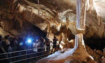 Jenolan Caves Chifley Cave Tour Thumbnail 4