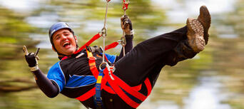 Illawarra Fly Zip Line Tours Thumbnail 1
