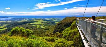 Illawarra Fly Zip Line Tours Thumbnail 6