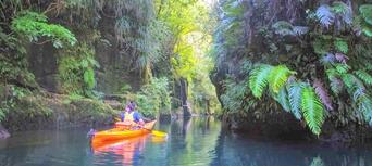 Scenic Lake Mclaren Kayak Tour Thumbnail 1