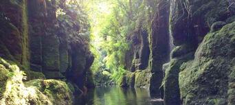 Scenic Lake Mclaren Kayak Tour Thumbnail 5