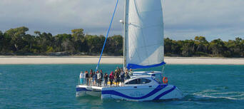 Fraser Island Half Day Eco Sailing Adventure Thumbnail 6