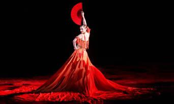 Great Opera Hits at the Sydney Opera House Thumbnail 3
