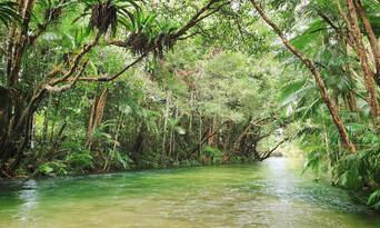 River Drift Snorkelling Thumbnail 3