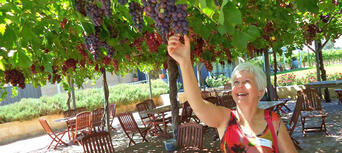 Swan Valley Wineries Full Day Tour with Afternoon Cruise Thumbnail 2
