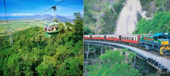 Return Skyrail Rainforest Cableway Thumbnail 4