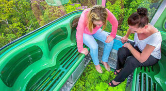 Return Skyrail Rainforest Cableway Thumbnail 1