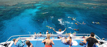 Great Barrier Reef Snorkel and Dive Cruise Thumbnail 5