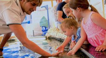 AQWA - The Aquarium of Western Australia Tickets Thumbnail 1