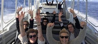 Dolphin Island Adventure Cruise Thumbnail 6