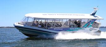 Dolphin Island Adventure Cruise Thumbnail 1